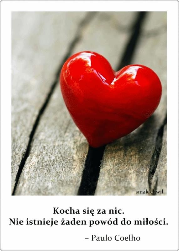 Kocha się za nic. Nie istnieje żaden powód do miłości