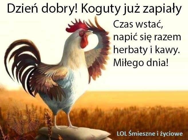 http://img1.obrazkionline.pl/ob/dzien-dobry/dzien-dobry_003.jpg