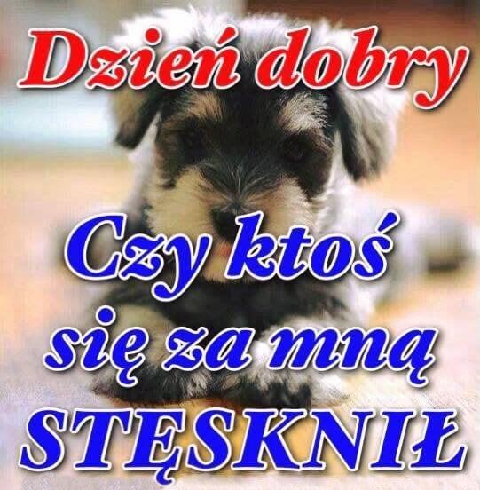 22 Dzień Dobry Obrazki Zdjęcia Na Facebook Obrazkionline