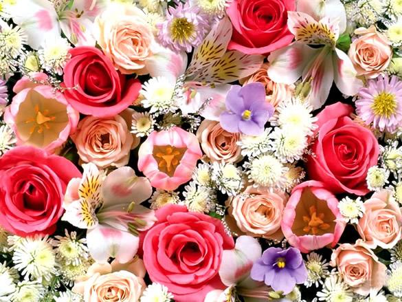 Kwiaty obraz 8