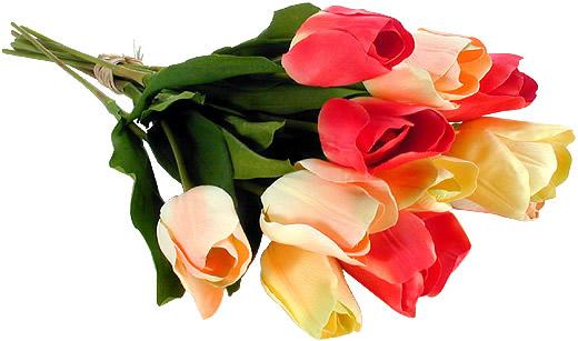 Kwiaty obraz #1081