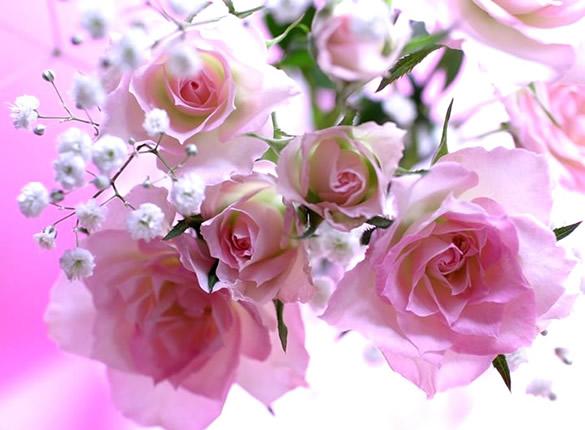 Kwiaty obraz 9