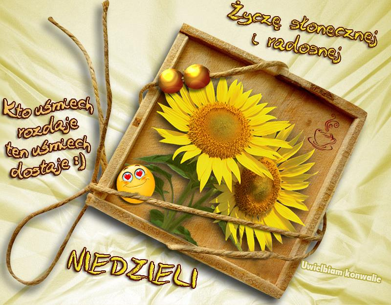 Życzę słonecznej i radosnej Niedzieli