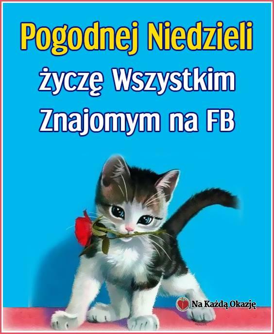 Pogodnej Niedzieli życzę Wszystkim Znajomym na FB