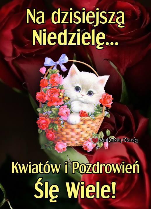 https://img1.obrazkionline.pl/ob/niedziela/niedziela_011.jpg
