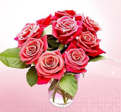 Róże obraz 7